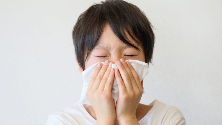 「完全食」は春先のスギ花粉症に効果があるのかを考えてみました!