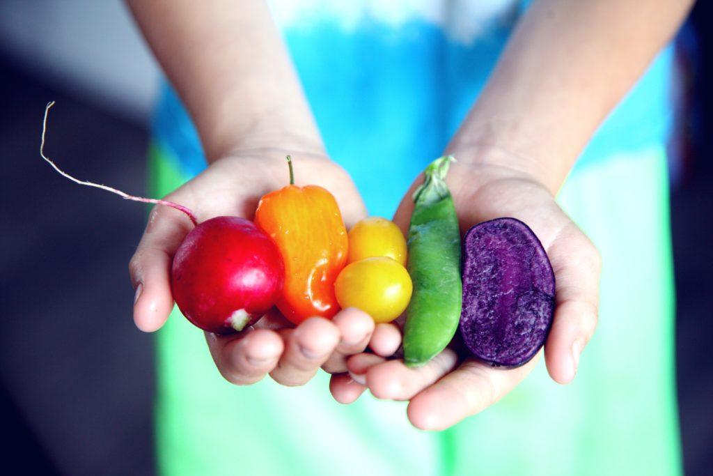 完全食+菌活で腸内環境を改善